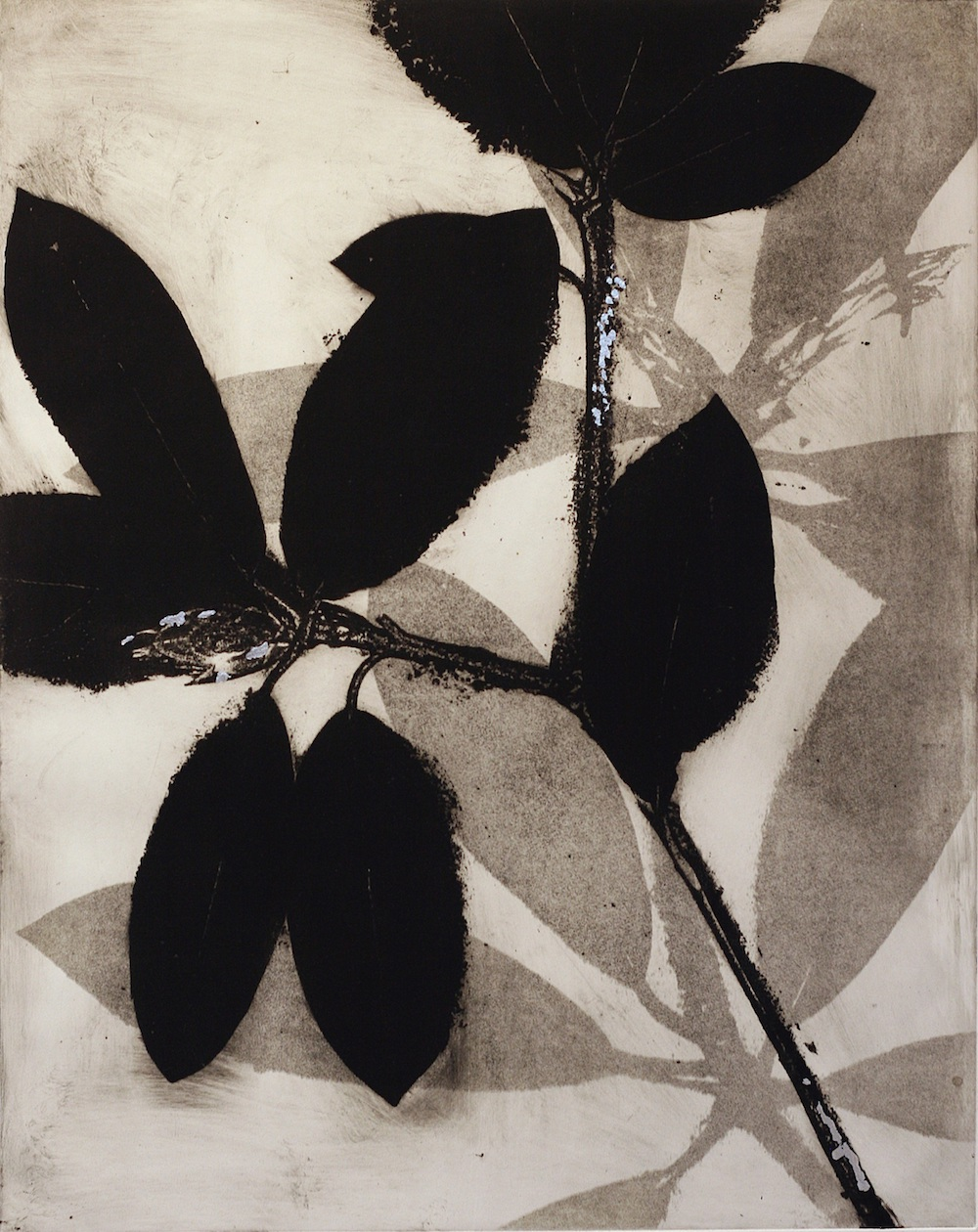 Anthology VI Monotype by Jane Cooper