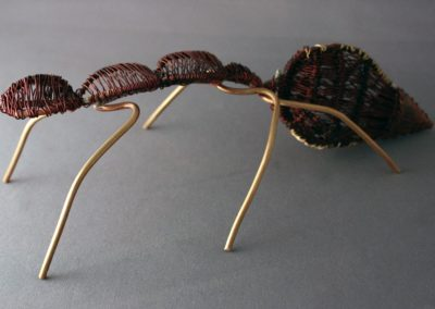 Copper Ant