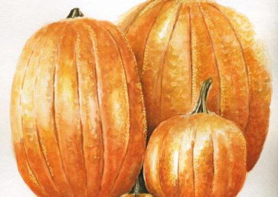 "<span style=""color: #ff5c00; font-weight: 600;"">HONORABLE MENTION</span><br>Pumpkins, Mary Bevilacqua"
