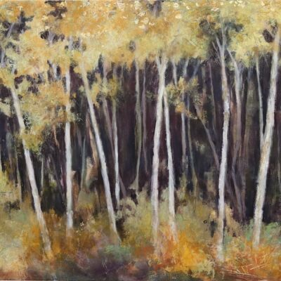 Beeches by Jeannie Celata